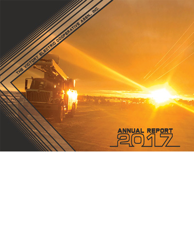 Annual report 2017 cover